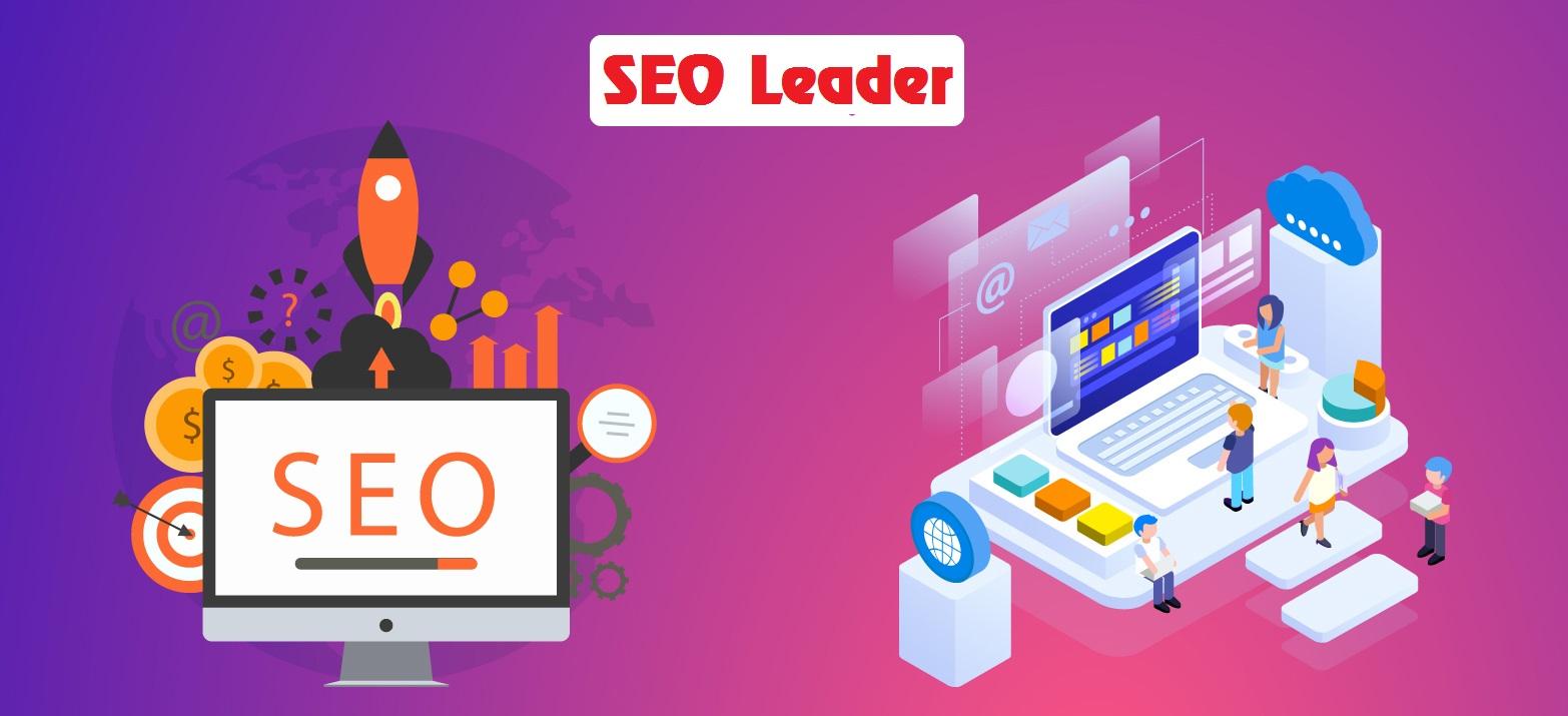 SEO Leader nâng cao hoc24h.net