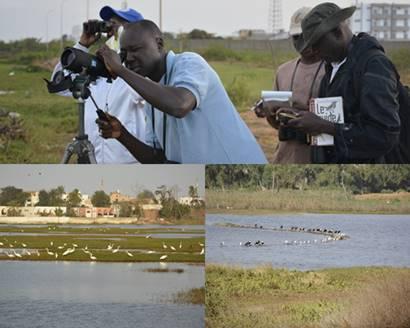 Zone de captage : un quartier qui capte : Tourisme, zone, captage, Grand, Yoff, autoroute, environnement, nature, savane, nappe, écolodge, eau, visite, vacance, LEUKSENEGAL, Dakar, Sénégal, Afrique