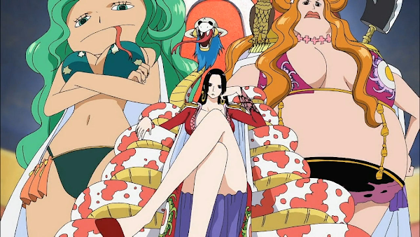 One Piece – Arc Amazon Lily
