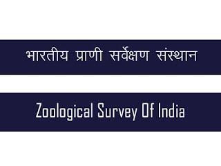 भारतीय प्राणी सर्वेक्षण संस्था