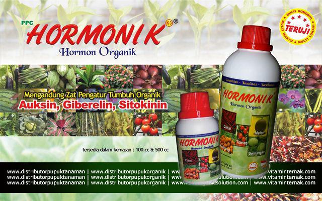 Hormon Pertumbuhan Multiifungsi Untuk Tanaman dan Hewan Hormonik