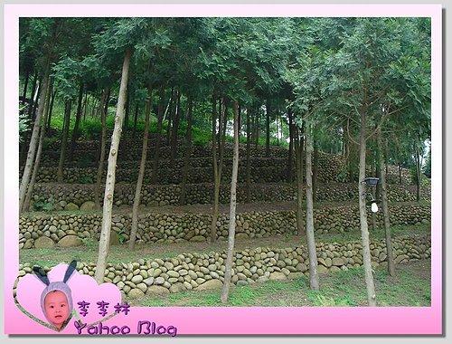 台中新社景點|新社古堡莊園