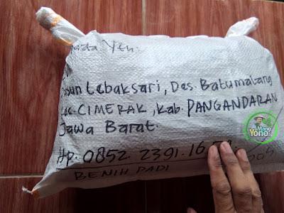Benih Padi CAKRABUANA 02 (CB02) Setelah di Packing  Pesanan EVI Pangandaran, Jabar.