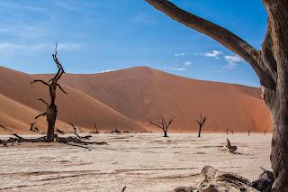 Salar en el desierto de Namib