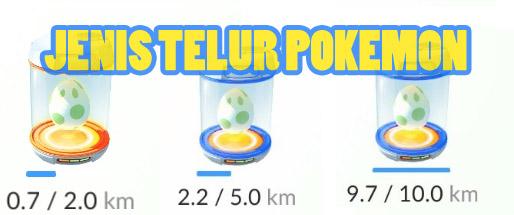 Cara Menetaskan Telur Pokemon Go dengan Cepat dan Mudah