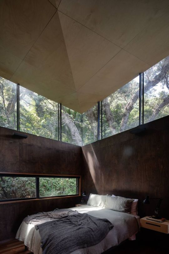 Bedroom with a view in the dense woodland next to a beach at Piha, Auckland Region, New Zealand