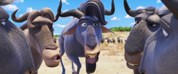 Jungle Beat- The Movie (2020) HD 1080p y 720p Latino Dual