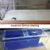 How to clean an old aquarium and apply background