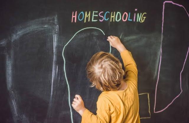 Mengenal Sistem Pendidikan Homeschooling (Sekolah Rumah)