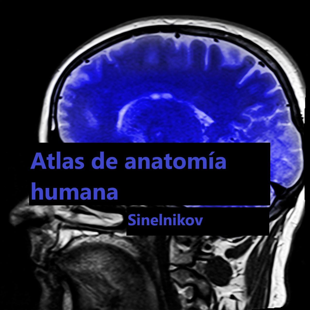 Descargar el libro Atlas of Human Anatomy de Sinelnikov, tomo III