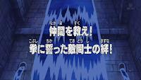 One Piece Episode 256