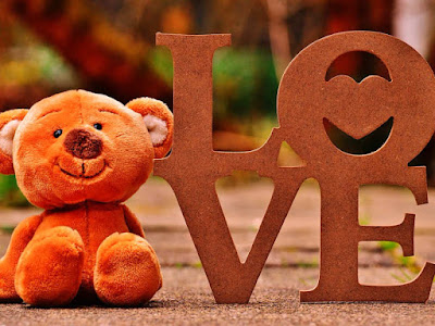 Teddy Day Shayari Sms For 2019