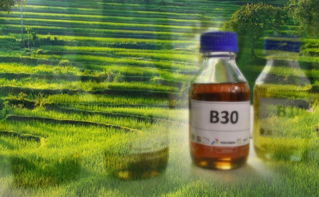 uji terap B30