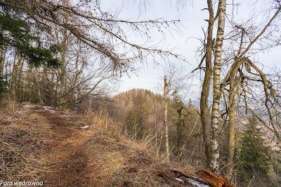 Stoimy na wierzchołku Kozła (774 m n.p.m.), za plecami dobrze widoczny Wołowiec