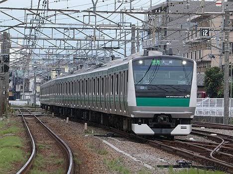 【ダイヤ改正でもありえん!】E233系の特急 大崎行き