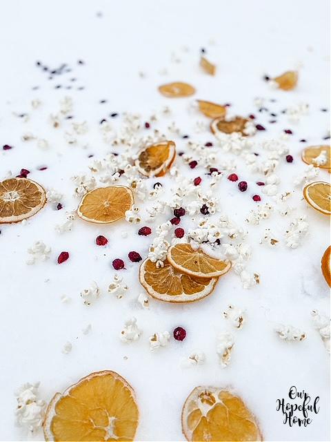 snow oranges berries popcorn