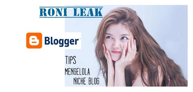 2 Tips untuk Mengelola Niche Blog bagi Pemula