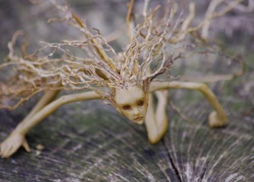 rzeźby z korzeni