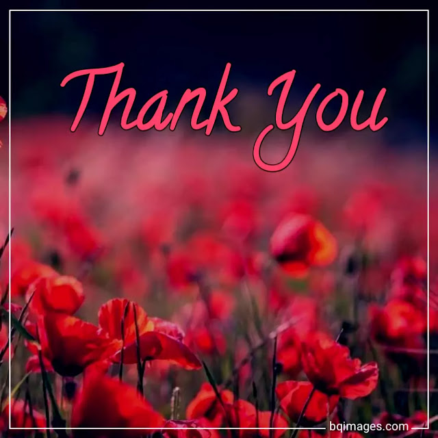 thank you all images with flowers