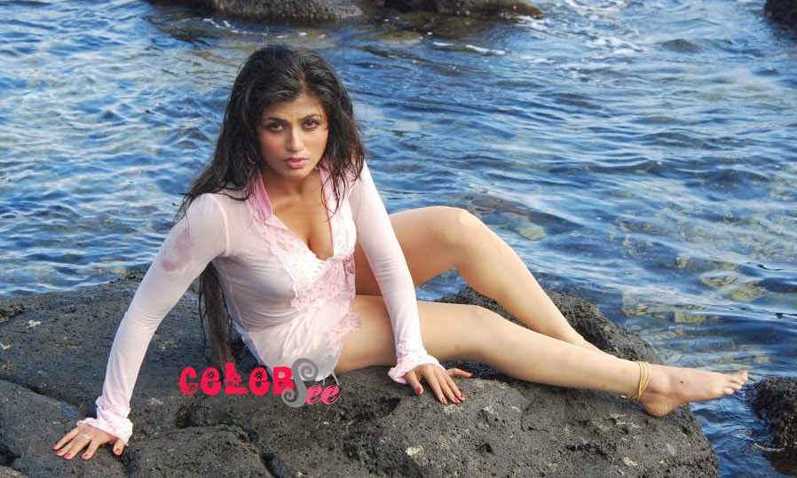 CelebsView: Aarti Puri Most Hottest Pictures