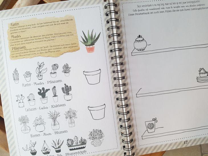livre de dessin action