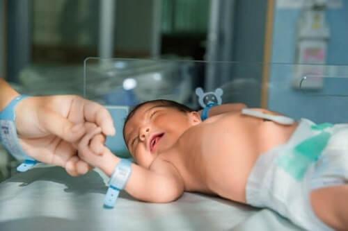 مراحل الولادة الطبيعية للبكر