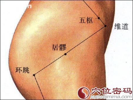 居髎穴位 | 居髎穴痛位置 - 穴道按摩經絡圖解 | Source:xueweitu.iiyun.com