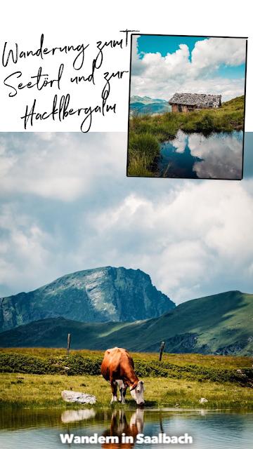 Wanderung zum Seetörl und zur Hacklbergalm  Schattberg Westgipfel Saalbach 20