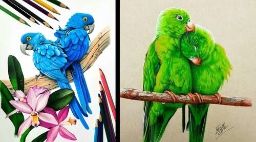 00-Bird-Pencil-Drawings-Bele-www-designstack-co