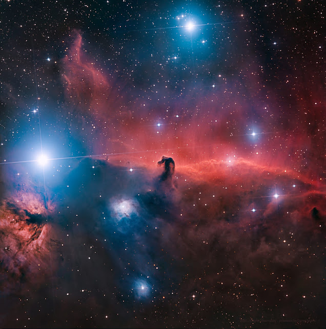 IC 434 - The Horsehead Nebula in Orion processed with free image data available for download on Insight Observatory's image set repository, Starbase. Imaged on ATEO-1 and processed by Daniel Nobre.