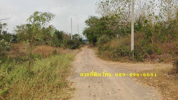 ขายที่ดิน 356 ตรว ตำบลน้ำตาล อำเภออินทร์บุรี จังหวัดสิงห์บุรี ใกล้ถนนสายเอเซีย