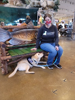 A woman in a mask sits on a fish-shaped bench in Bass Pro Shops. A yellow lab in a purple service dog harness lies under the bench and looks at the woman.