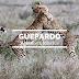 Guepardo II