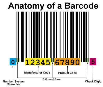 Anatomi Barcode