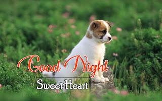 Latest Beautiful Good Night Wallpaper Free Download %2B44