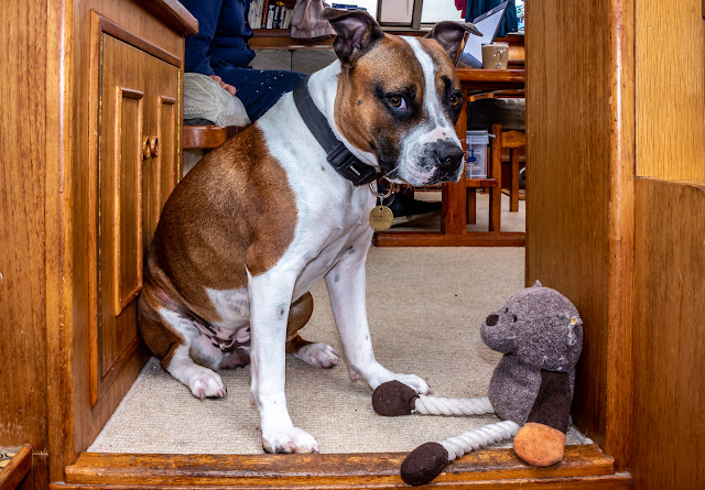 Photo of Ruby with her teddy