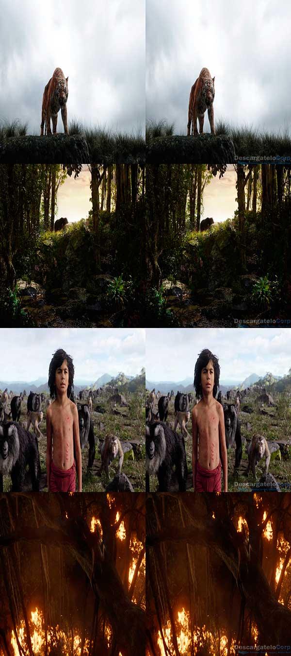 El Libro de la Selva 3D HD Español Latino