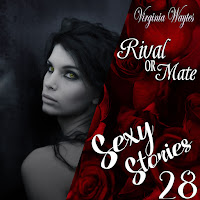 Sexy Stories 28 - Rival or Mate
