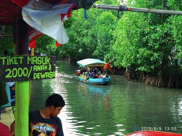 Destinasi Ekowisata Mangrove Sungai Rindu Bekasi