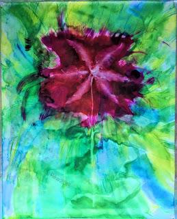 Solarfast prints_Sue Reno_Image 61