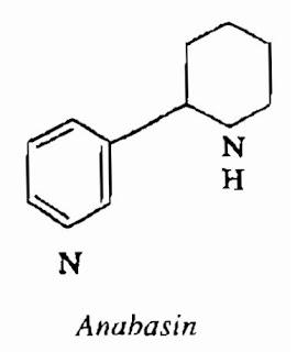 Thành phần hóa học Thuốc Lá - Nicotiana tabacum - Nguyên liệu làm thuốc Có Chất Độc