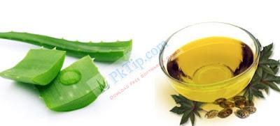 Aloe Vera And Castor Oil For Hair Growth