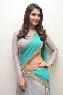 Vaani Kapoor in Saree