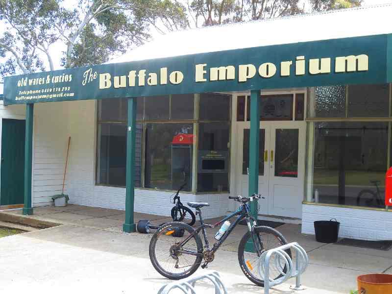Buffalo Victoria