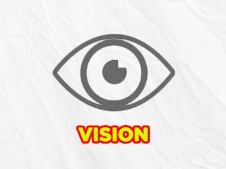 vision lol wild rift