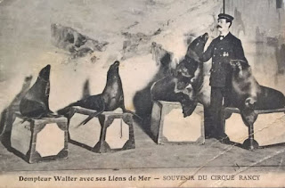 cirque autrefois