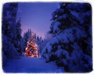 Christmas Tree Images 2019