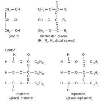 Gliserol, triester dari gliserol, tristearin atau gliseril tristearat serta tripalmitin atau gliseril triplamitat