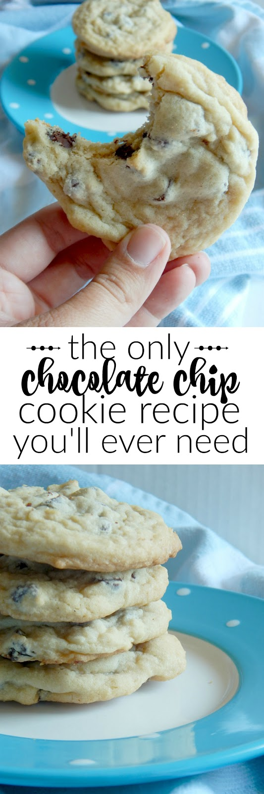 chocolate chip cookie recipe (sweetandsavoryfood.com)