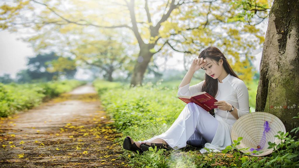 Mùa hoa điệp vàng và em áo dài